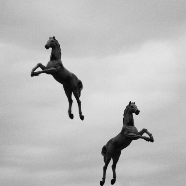 Jumping Horses, by ©Gonzalo Bénard