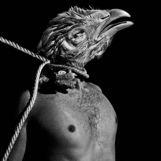 The BeHeaded Chicken, by ©Gonzalo Bénard
