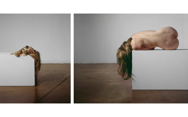 by ©Bill Durgin