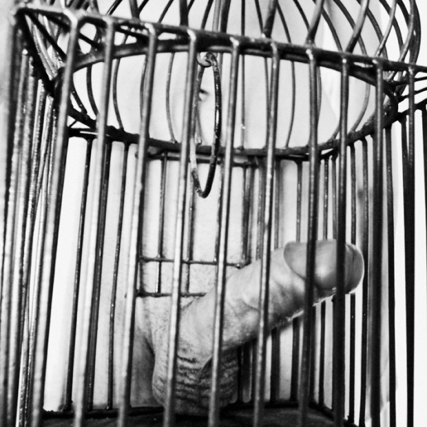 caged sex, by ©Gonzalo Bénard