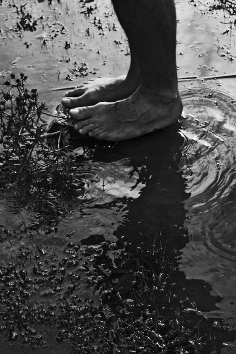 Mud Feet, first A/P by ©Gonzalo Bénard