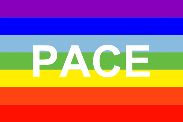 Pace flag