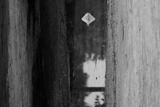 Puddle reflection, Paris, by ©Gonzalo Bénard