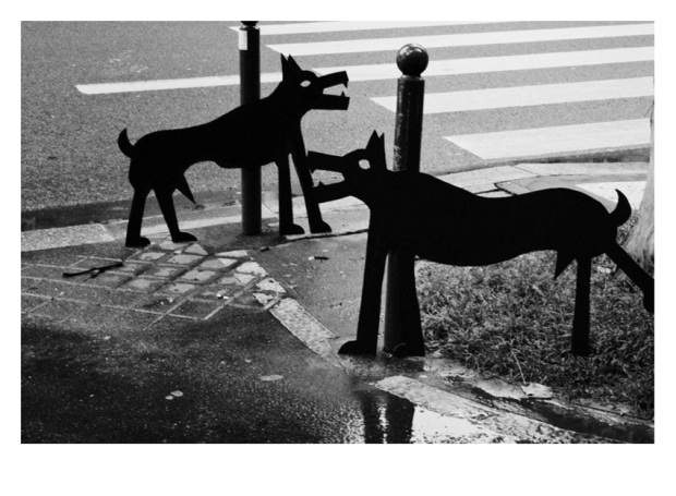 Walking the Dogs #10, Paris, by ©GonzaloBénard