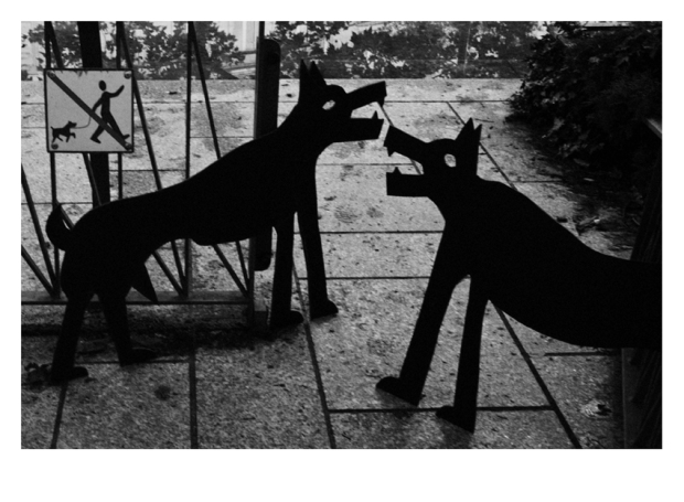 Walking the Dogs #21, Paris, by ©GonzaloBénard