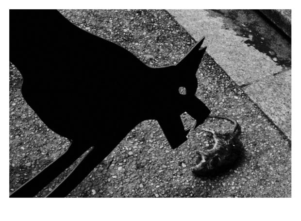 Walking the Dogs #23, Paris, by ©GonzaloBénard