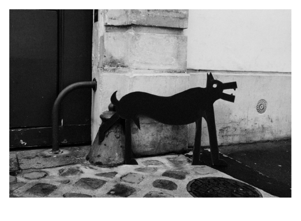 Walking the Dogs #4, Paris, by ©GonzaloBénard