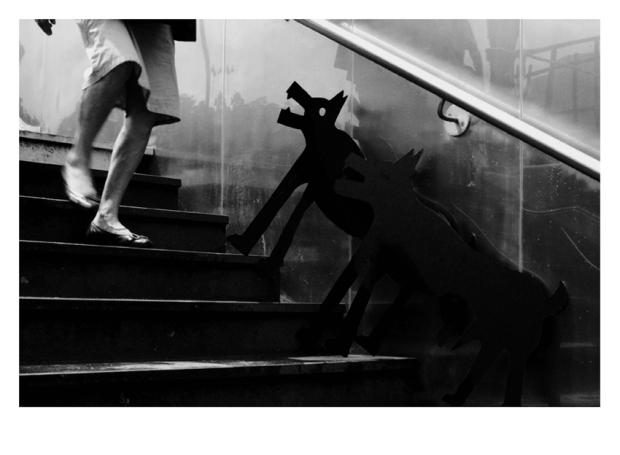 Walking the Dogs #6, Paris, by ©GonzaloBénard