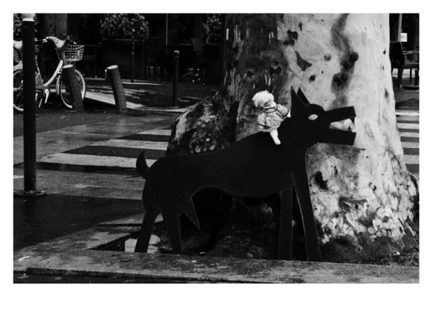 Walking the Dogs #7, Paris, by ©GonzaloBénard