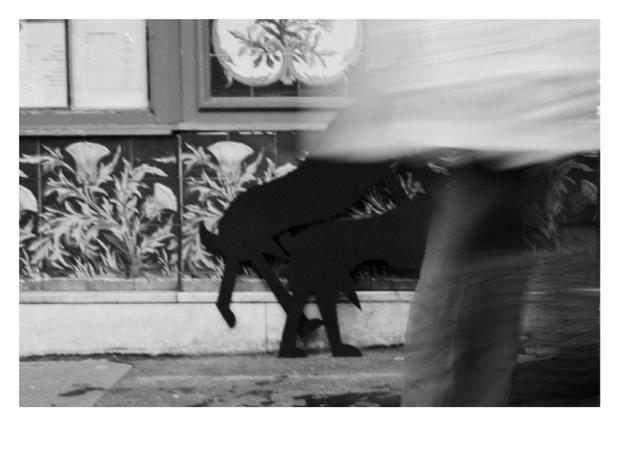 Walking the Dogs #8, Paris, by ©GonzaloBénard