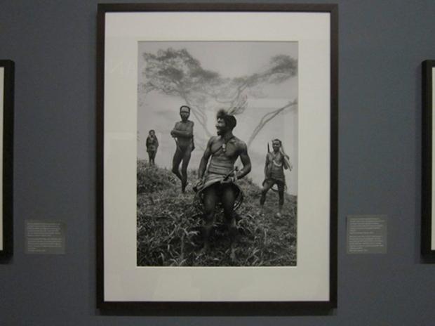 Genesis, Sebastiao Salgado at Maison Européenne de Photographie, Paris