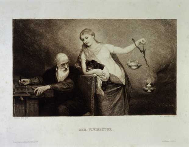 The vivisector asked to choose between head and heart, a photogravure (1886) after an etching by M J Holzapfl