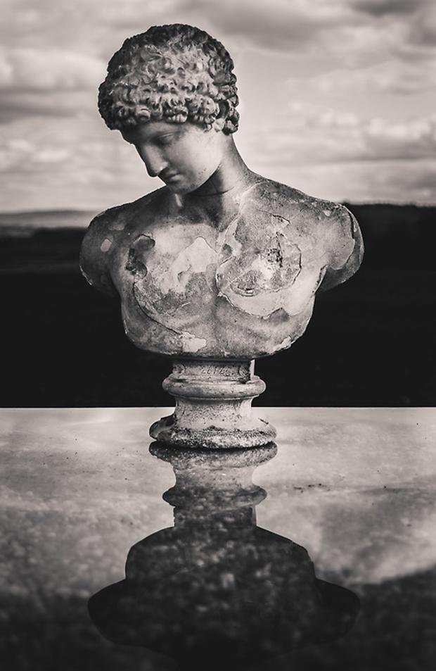 By Freddie Ardley