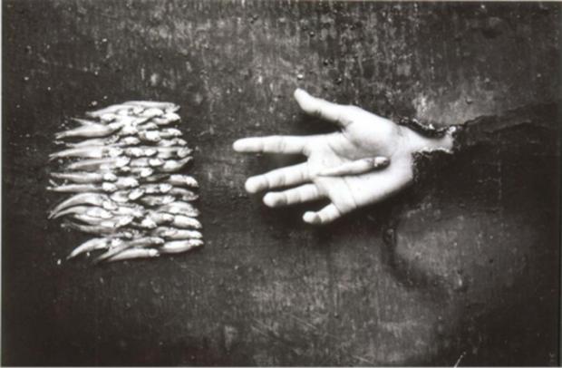 by Juan Carlos Alom, Solo tu cabes en la palma de mi mano, 1996