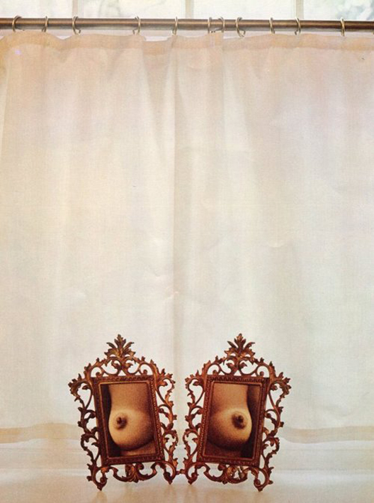Breasts in Frames, 1971, by Sam Haskins