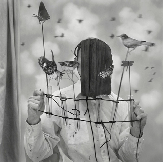 by Robert and Shana ParkeHarrison