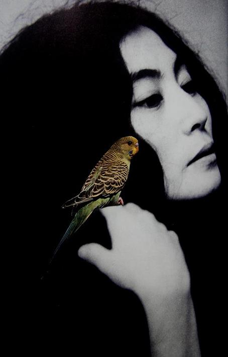 Yoko 2010, by Emilie Halpern