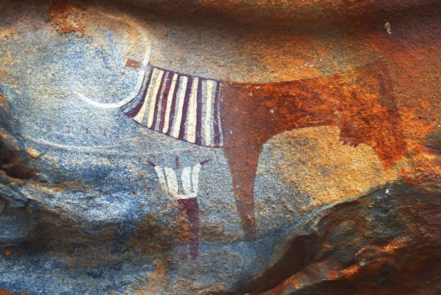Painted image of long-horned cow with human figure underneath, Laas Geel, Somalia (Photograph © TARA/David Coulson – image not yet catalogued)