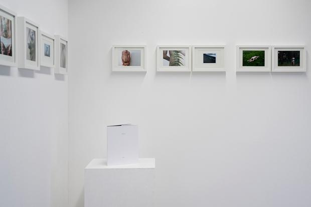 Esthaem s expo by Claudia N Lehmann